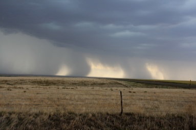 A dramatic example of wind shear provided by these precipitation shafts