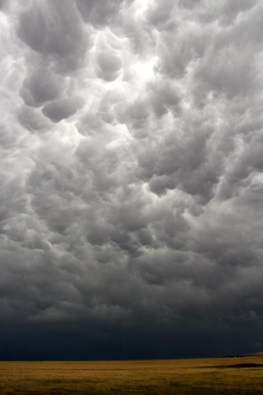 Extensive Mammatus clouds