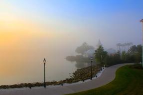 A foggy Florida morning