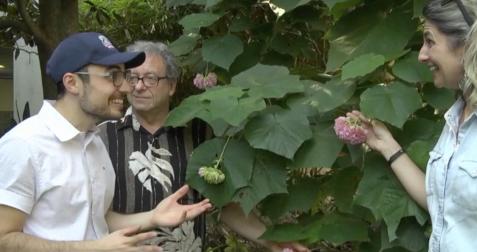 UF Teaching Garden